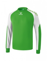 ERIMA Kinder / Herren Graffic 5-C Funktionssweat 5-CUBES Basics green/weiß