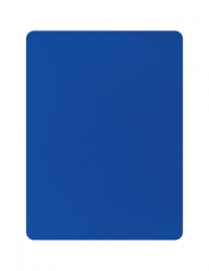 ERIMA Blue Card
